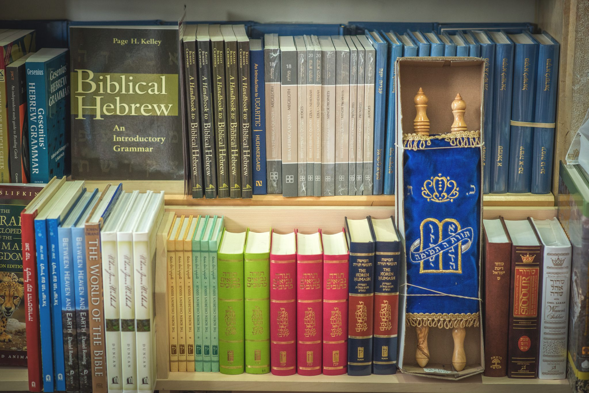 The Bible Society in Israel Brings The Scriptures To The